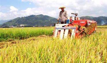 广州农业APP开发