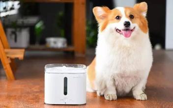 宠物智能饮水机APP开发 养宠界的黑科技