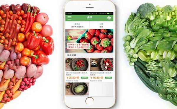 农产品销售APP定制开发对农民意义分析
