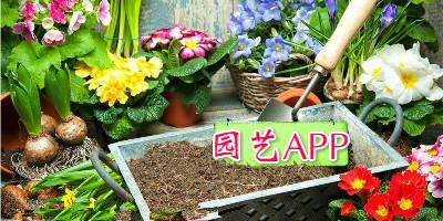园艺app开发 做个园艺家