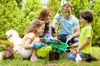 植树APP开发 开启植树新世界