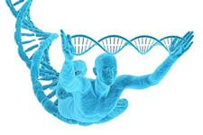 基因检测APP开发 古人类基因也能看