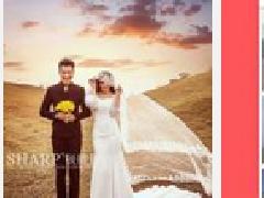 浅析婚庆策划APP未来发展趋势